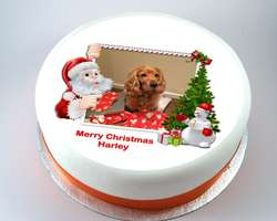 Santa & Christmas Tree Photo Cake